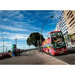 Bus turístico Santa Cruz - Citysightseeing
