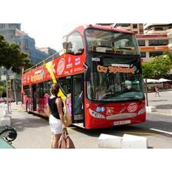 Bus turístico Santa Cruz (desde el Puerto de la Cruz)