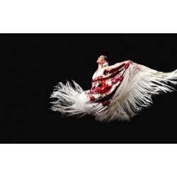 Ballet Carmen Mota (consultar traslado)