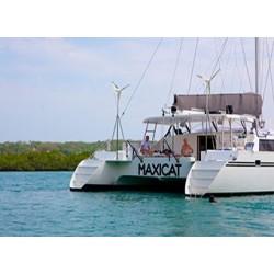 Maxicat (bus + almuerzo)