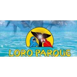 Loro Parque (sólo bus)